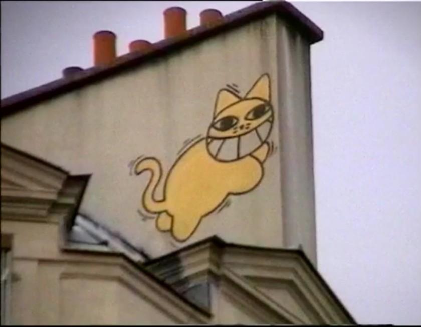 chats perchés 6