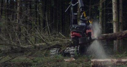 temps de forêts 4