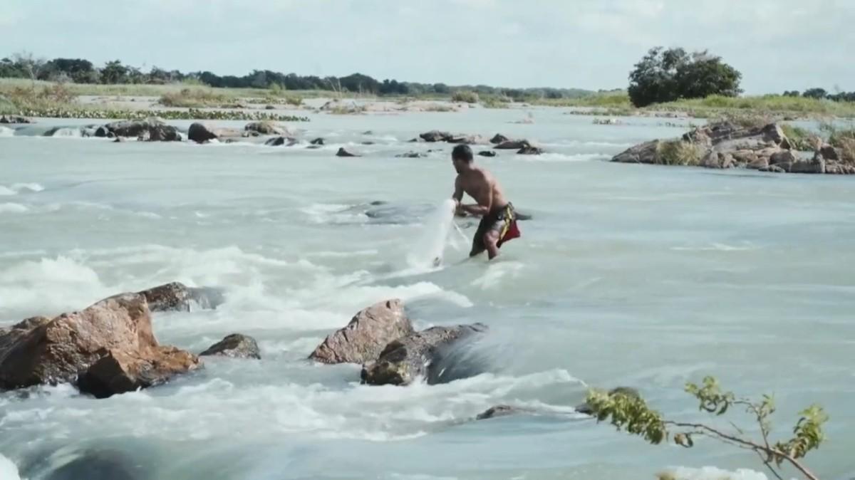 F COMME FILMOGRAPHIE –Brésil